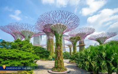 6 Majestic Tourist Attractions in Singapore You Can't Miss